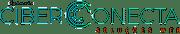 Agência Ciberconecta - Soluções Web